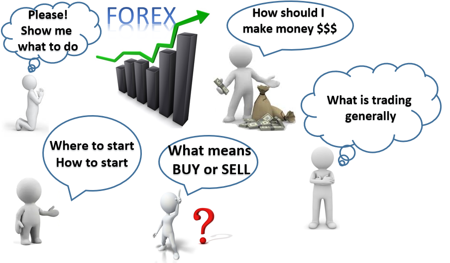The Best Forex Trading Course for Beginners
